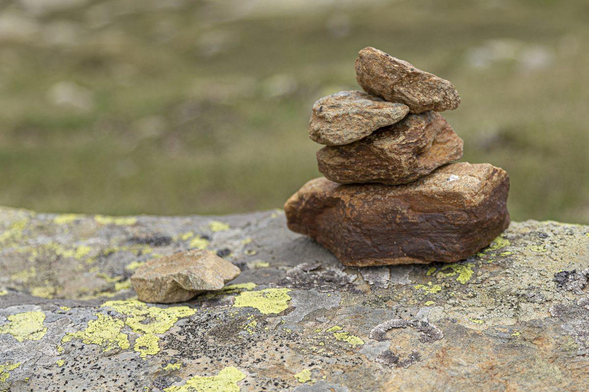 La pietra scartata